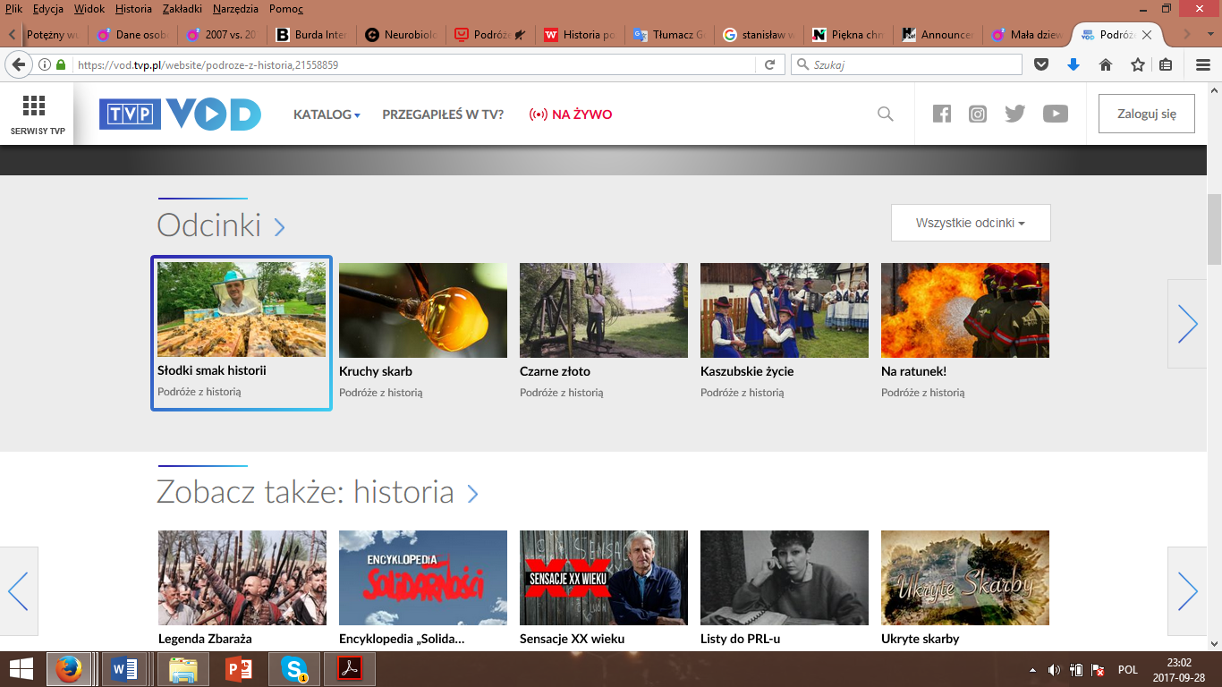 Print screen of the site of VOD TVP.